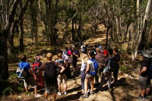 Morialta Day Walk - 12